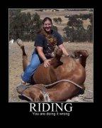 美女,不能这么骑马的啊