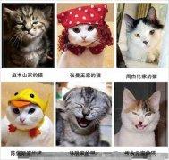 超搞笑动物模仿秀,搞笑表情
